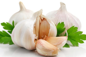 Garlic medicinal properties and benefits of garlic?, lahasun ke aushadheey gun va lahasun khaane ke phaayade?, लहसुन के औषधीय गुण व लहसुन खाने के फायदे?
